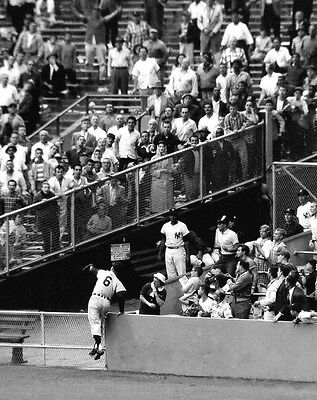 AL KALINE DETROIT TIGERS LEGEND , GREAT CATCH IN THE OUTFIELD  COLOR 8x10 PHOTO