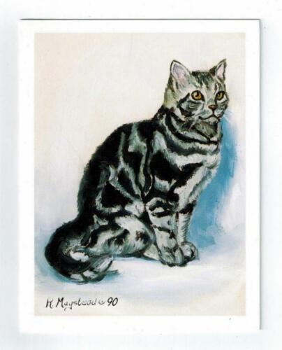 Black & White Cat Sitting Notecards Set - 12 Note Cards By Ruth Maystead CATS-12
