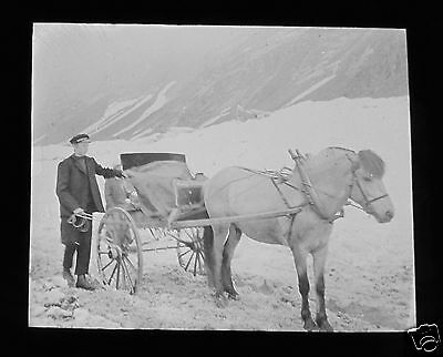 Glass Magic lantern slide UNKNOWN LOCATION 3 NORWAY - BOY WITH PONY AND TRAP