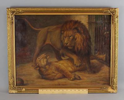Antique Bonardi O/C Oil Painting, Caged Male & Female African Lions in Zoo, NR