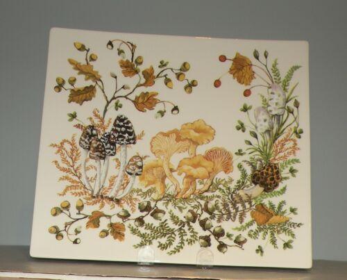 New Rectangular Platter  Chanterelle  pattern GIEN,  France