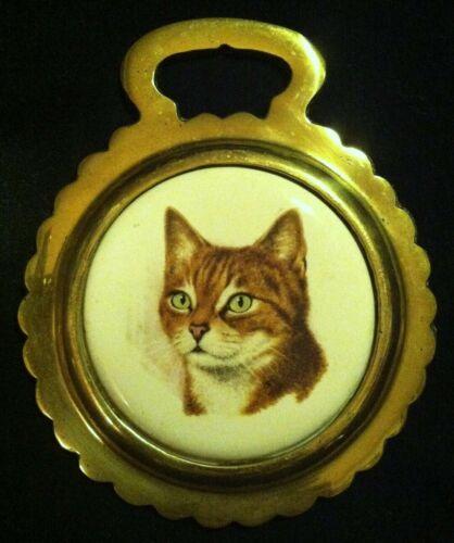 Vintage ORANGE STRIPED TABBY CAT Porcelain Horse Brass WOW YOUR WALLS! Divets!