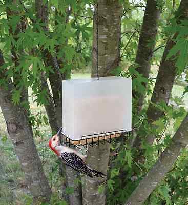 Bird Feeder Large Suet and Seed Cake Saver Birdfeeder !