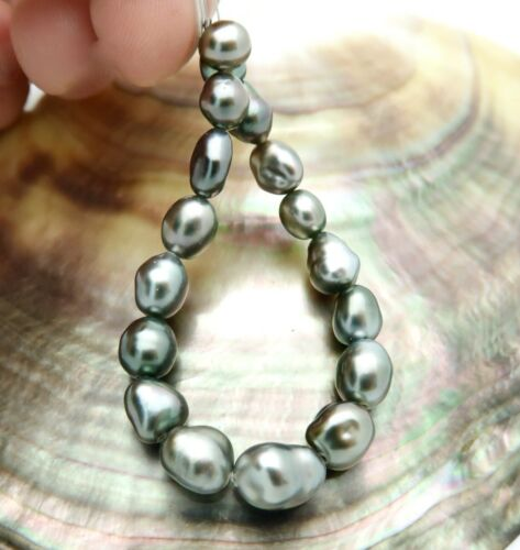 "GORGEOUS & WILD GENUINE TAHITIAN KESHI PEARLS 17pc SET 5.8"" 5.3-7.5mm 6.36g"