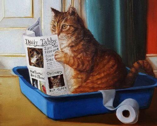 Print - Kitty Throne by Lucia Heffernan (Cat reading newspaper in litter box)