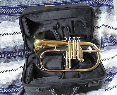 New Flugelhorn (Wisemann) Gold Brass Bell Case FLH-300  GRT! TRUMPET PLAYER GIFT