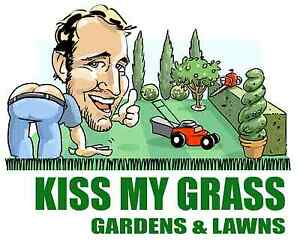 Kiss My Grass Gardens and Lawn Mowing Glynde Norwood Area Preview