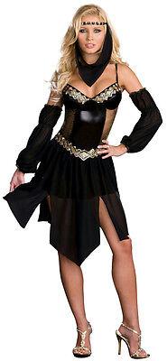 Dreamgirl Women's Sexy Harem Arabian Nights Girl Costume Adult Costume XS 0-2](Arabian Harem)