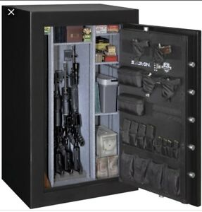 WANTED GUN SAFE