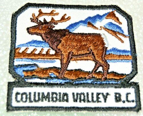 COLUMBIA VALLEY District Boy Scout Uniform Badge Canadian (BCC18C)