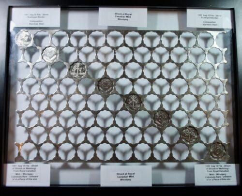 Scalloped  Webbing - 84 holes Huge Rare Royal Canadian Mint