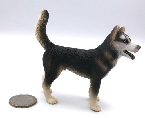 Schleich HUSKY MALE 2007 Retired Dog Figure 16371