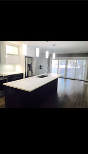 Executive Townhouse Minutes to Downtown