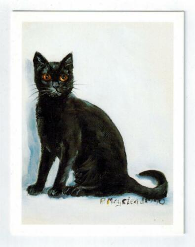 New Black Cat Sitting Notecards Set - 6 Note Cards By Ruth Maystead CATS-19