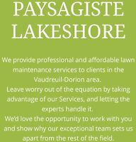 Coupe et entretien de pelouse lawn care and cut paysagiste