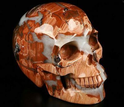 """LIFESIZED 6.7"""" RED JASPER Carved Crystal Skull, Realistic, Crystal Healing"""