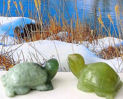 Schildkröte Fengshui Glücksbringer Gesundheit Jade  Paar