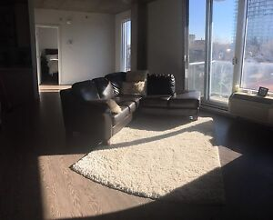 3 week sublet - July 16 to Aug 4 - Luxury condo with parking