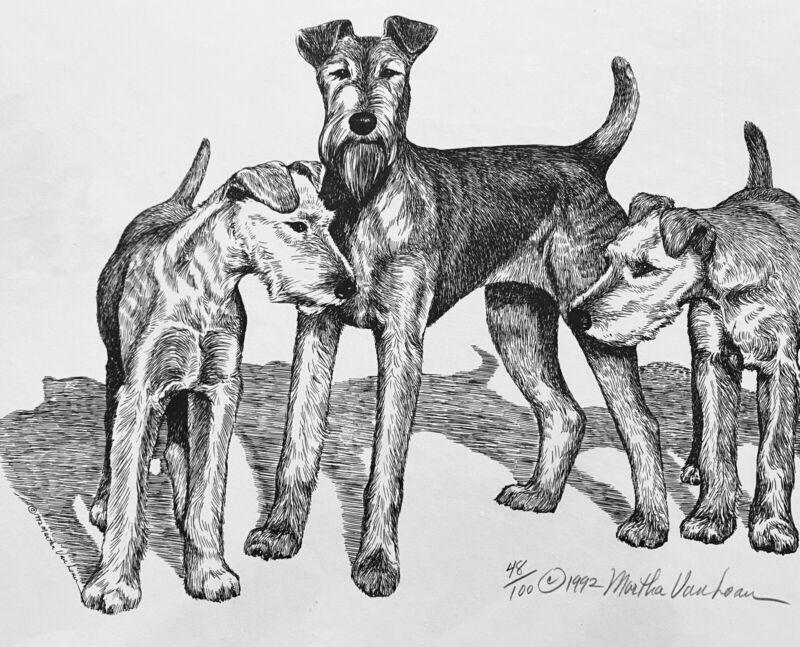 Irish Terrier Trio Print 48/100 By Van Loan