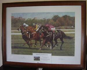 OCTAGONAL  WINS THE DERBY - LIMITED EDITION - SIGNED FRAMED PRINT Cooranbong Lake Macquarie Area Preview