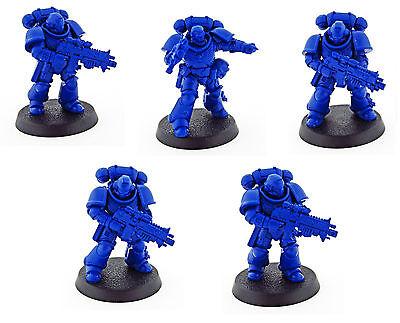 Intercessor Squad B   Primaris Space Marines   Know No Fear   Warhammer 40k