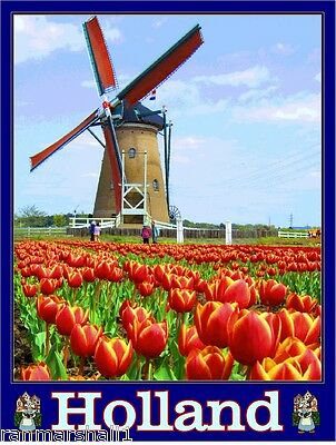 Holland Dutch Netherlands Windmill Tulips Europe Travel Advertisement Poster