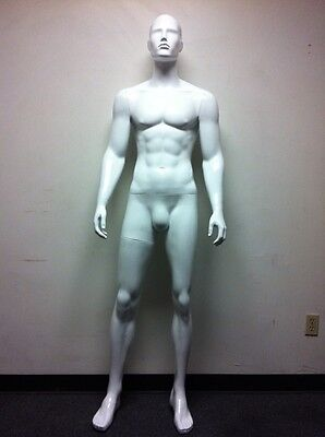Fiberglass Glossy Abstract Male Mannequin Full Body Manikin Manequin Ds3