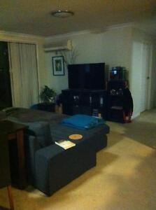 Room for rent ideal for couple Westmead Parramatta Area Preview