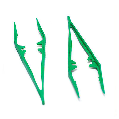 2 X Specimen Tweezers for Feeding Reptiles Bugs Insects Praying Mantis Tongs