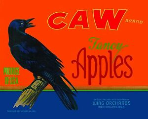 Medford-Oregon-Caw-Crow-Raven-Black-Bird-Apple-Fruit-Crate-Label-Art-Print
