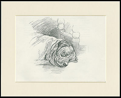 SLEEPING MASTIFF LOVELY OLD 1930'S DOG SKETCH PRINT by KF BARKER READY MOUNTED