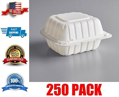 250 Case 6 X 6 Take-out Container 1-compartment White Plastic Hinged