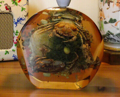 VINTAGE 1950s LUCITE TABLE LAMP SEALIFE CRAB ROCK POOL ENCAPSULATED SCENE