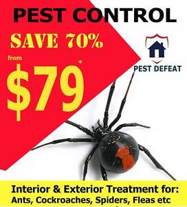 Cheap End of Lease flea spray @ Pest Defeat Brisbane Brisbane City Brisbane North West Preview