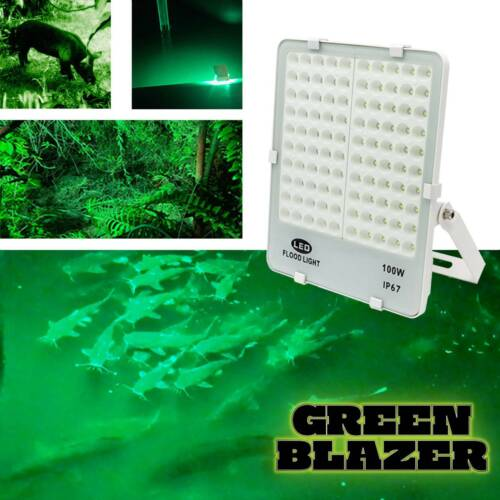 Rite Angler Green Blazer Dock Boat Hunting LED Light for Attracting Fish & Game