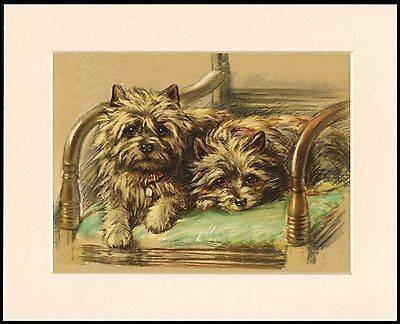 CAIRN TERRIER TWO LITTLE DOGS IN A CHAIR LOVELY DOG PRINT MOUNTED READY TO FRAME
