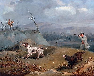 "1845- Henry T Alken, Grouse Shooting, Hunting, Bird Dog, 20""x16""  Art Print"