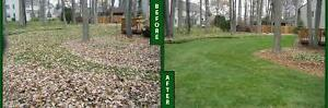 WILL.RAKE.AND.REMOVE.ALL.UNWANTED.LEAVES.          (same.day) Windsor Region Ontario image 1