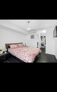 NEED A PRIVATE RENTAL OR A SHARE HOUSE D'aguilar Moreton Area Preview