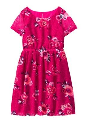 NWT Gymboree Ready, Jet, Go! Floral Lace Dress Magenta Pink Size 8