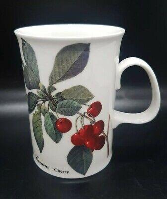Dunoon Malvern Fruit Theme Coffee Cocoa Tea Porcelain Mug Feat. Cherries & -