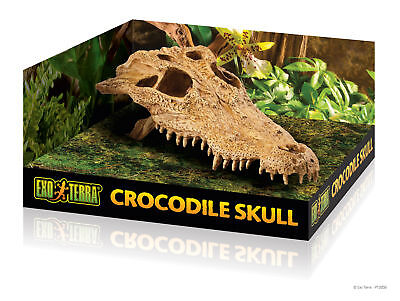 Krokodil Kopf (Exo Terra Skull Dekorations Schädel - Krokodil Kopf 23 x 12x 7.5cm)