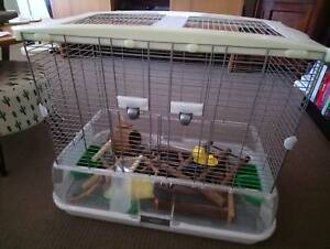 Bird cage, environmental / mess free. Not available anywhere in Aus