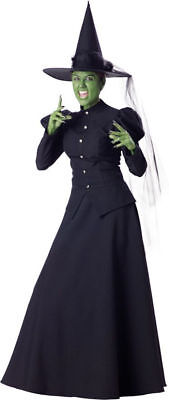 Morris Costumes Women's Witch & Sorceress Complete Outfit XL. IC1022XL](Sorceress Outfit)