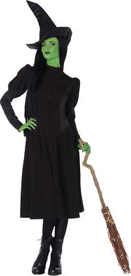 Morris Costumes Women's Elphaba Witch Complete Outfit Green Black L. UAWI85265LG