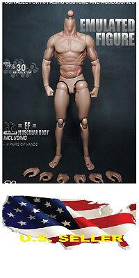 ZC Toy 1/6 Scale Muscular Nude Figure body TTM19 fit Wolverine Head ❶❶USA❶❶