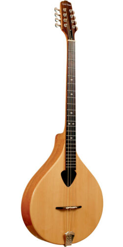 Gold Tone Irish Bouzouki Mandolin with Case BZ-500 - NEW