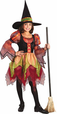 Morris Costumes Girls Child Fairy Tiered Witch Colorful Costume 4-6 . FW5863SM - Witch Costumes