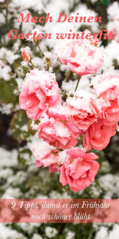 Jetzt loslegen und im Frühjahr freuen.