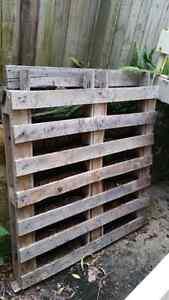 Pallet vertical herb garden Alexandra Headland Maroochydore Area Preview